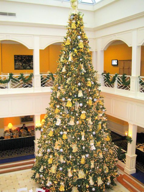 The Beautiful 35 Foot Christmas Tree In The Atrium Carly K Kenny Virginia Beach Va Types Of Christmas Trees Holiday Home Christmas Tree
