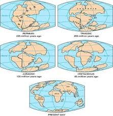 Lost continent under indian ocean earth earthsky earth n us image result for world map when continents were connected gumiabroncs Gallery
