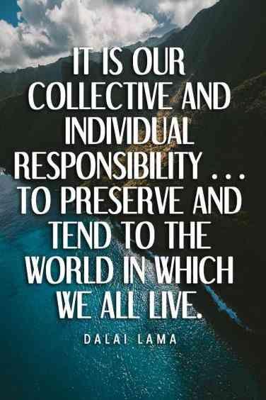 40 Best Environment Quotes To Inspire You To Help Save The Planet Mother Earth Quotes Earth Quotes Environmental Quotes
