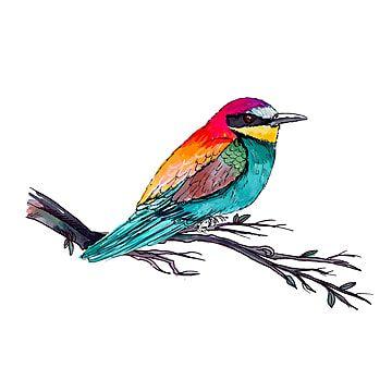 Birds Collection Watercolor Bird Flying Bird Silhouette Cartoon Birds