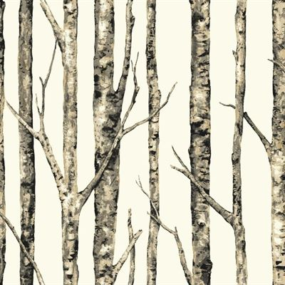 York Wallcoverings Classic Birch Trees Peelable Paper Prepasted