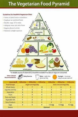 Vegetarian Food Pyramid Educational Poster 24x36 Healthy Living Hot New Rare Vegetarian Food Pyramid Food Pyramid Vegetarian Diet