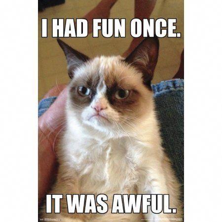 Grumpy Cat Fun Crazymemes Cat Memes Clean Grumpy Cat Humor Grumpy Cat