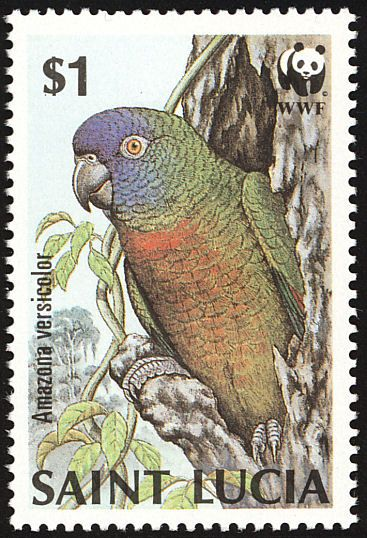 St. Lucia Amazon stamps - mainly images - gallery format