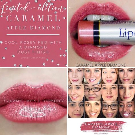 NEW/SEALED LIMITED EDITION LONG LASTING LIPSTICK, WATERPROOF, KISSPROOF, SMUGPROOF. Will ship with in 24 hrs USPS first class.