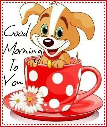 Dobro jutro vsem 💗💗💗