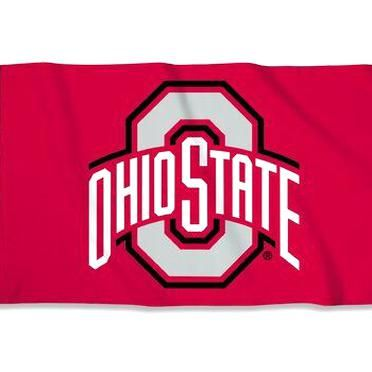 Pin By Aryanna Payten On My Beautiful Collections In 2020 Ohio State University Ohio State Buckeyes Ohio State