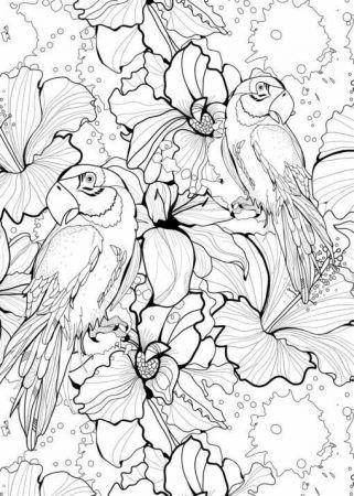 Blumen Ausmalbilder Ausmalen Coloring Coloringpagesforkids Kinder Erwachsenen Malvorlagen Painting Blumen Malvorlagen Tiere Ausmalen Ausmalbilder