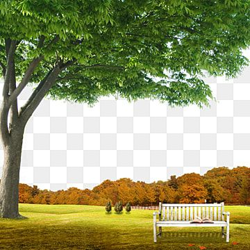 Garden Background Scene With Natural Background Garden Summer Vacation Png Transparent Clipart Image And Psd File For Free Download Landscape Clipart Garden Clipart Pink Flowers Background Garden background png hd images