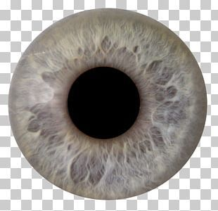 Eye Iris Photography Png Clipart Blue Blue Eye Circle Closeup Computer Icons Free Png Download Eye Texture Human Eye Iris