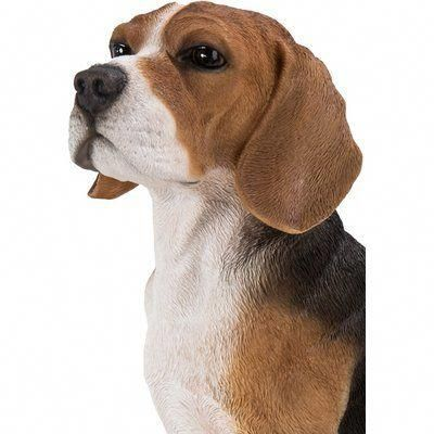 Obtain Great Recommendations On Beagles They Are Actually