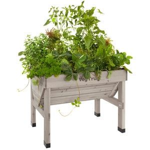 Vegtrug Raised Garden Planter Grey In 2020 Raised Garden Planters Raised Garden Beds Raised Garden