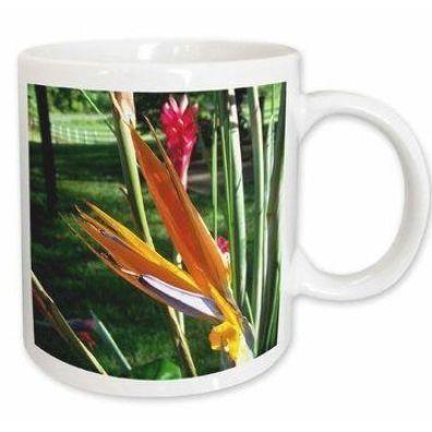 East Urban Home Bird Of Paradise Coffee Mug In 2020 Birds Of Paradise Flower Birds Of Paradise Colorful Birds