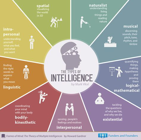 The 9 Types of Intelligence - By Howard Gardner Frames of Mind: The Theory of Multiple Intelligences - by Funders Founders