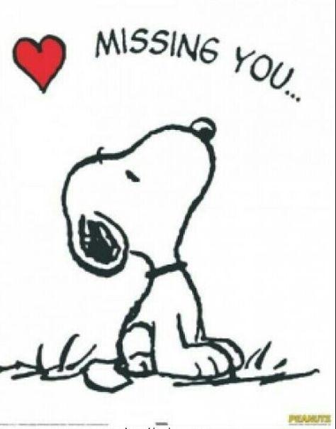 I Love Snoopy Snoopy Citazioni Snoopy E Charlie