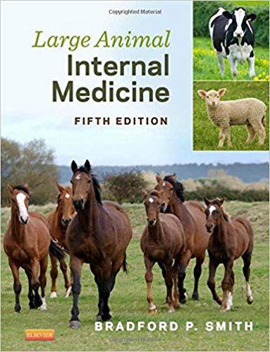Large Animal Internal Medicine 5th Edition EBook CST