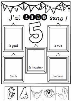 Les Cinq Sens Les Cinq Sens 5 Sens Et Activites 5 Sens
