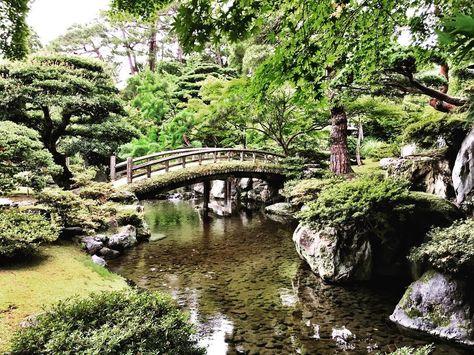 #japan #kyoto #historic #kyotoimperialpalace #京都御所 #京都御苑 #garden #yard #travel #architecture #summer #latergram