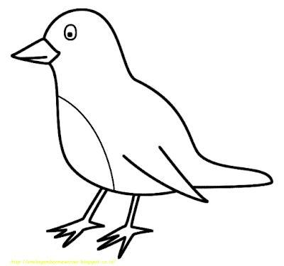 List Of Pinterest Burung Mewarnai Images Burung Mewarnai Pictures