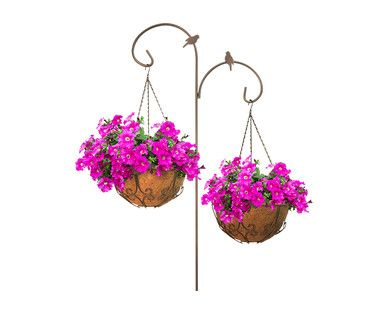 Aldi Us Gardenline Hanging Basket Assortment Aldi Grocery Ads Grocery