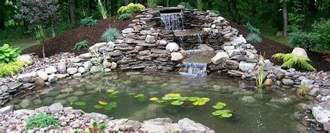 Pin On Pond Ideas
