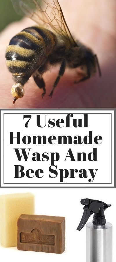 7 Useful Homemade Wasp And Bee Spray Kill Them Safely Bee Spray Insect Spray Wasp