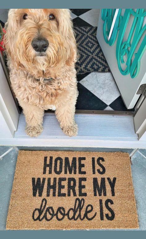 Home Is Where My Doodle Is Home Doodle Doormat Dog Doormat