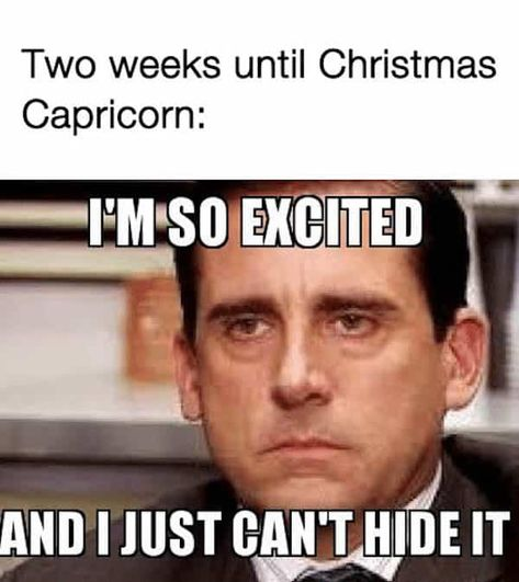 32 Funny Capricorn Memes That Are Calling Out All Cappies