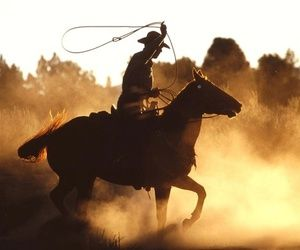 Kartinka S Tegom Horse Western And Cowboy Horse Wallpaper Cowboy Images Horses
