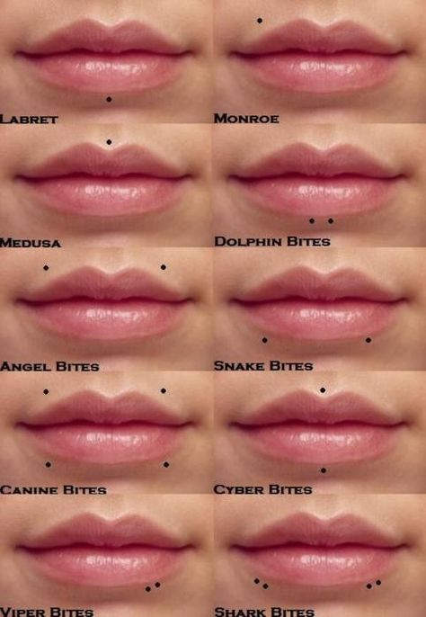 Lip Area Piercings