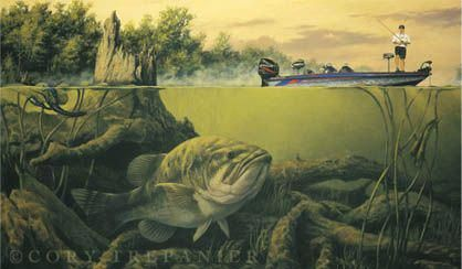 Novosti Fish Painting Fish Art Fish Wallpaper
