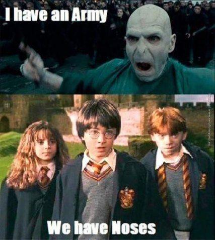 36 Ideas Memes Hilarious Clean Harry Potter Harry Potter Voldemort Harry Potter Memes Hilarious Harry Potter Jokes