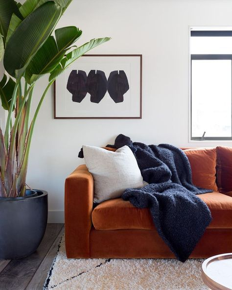 Dreamy Burnt Orange Velvet Sofa Living Room Orange Burnt Orange Living Room Burnt Orange Living Room Decor