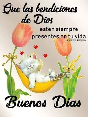 Que Las Bendiciones De Dios Estan Siempre Presentes En Tu Vida En 2020 Saludos D Buenos Dias Saludos De Buenos Dias Frases De Buenos Dias