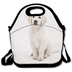 Golden Retriever Dog Lunch Bag Insulated Waterproof Lunch Box Food