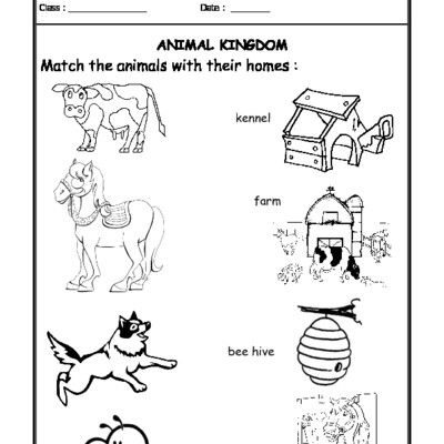 Worksheet 05 Animals And Their Homes With Images Animals And