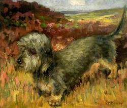 The Terrier Dog John William Howey 1873 1938 Hartlepool Museums