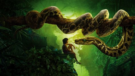 HD wallpaper: Tarzan poster, The Jungle Book, snake kaa, mowgli, Best movies of 2016