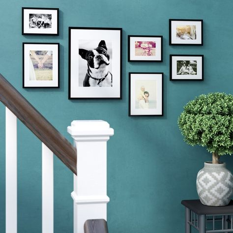 Joss & Main Essentials 7 Piece Perfect Wall Picture Frame ...