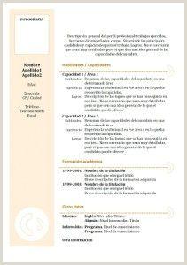 Exemple De Cv En Espagnol Template
