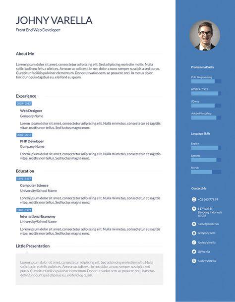 16 best Resume Flat ui images on Pinterest Resume design, Resume - flex programmer resume