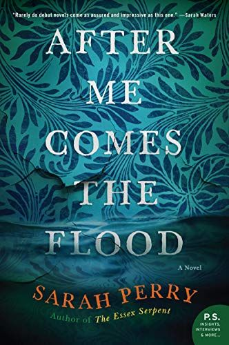 After Me Comes The Flood A Novel By Sarah Perry In 2020 Novels
