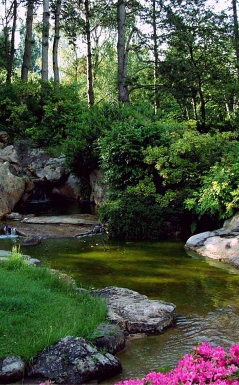 Un Jardin Au Parfum D Extreme Orient Jardin Asiatique Jardin