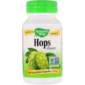 حشيشة الدينار الجنجل Humulus Lupulus فوائدها الطبية والعلاجية الرائعة Vegetarian Herbalism Hop Flower