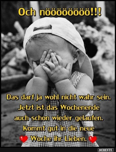 Och nöööööööö! | Funny pictures, sayings, jokes, really funny - M.Segeta - #funny #jokes #noooooooo #pictures #really #sayings