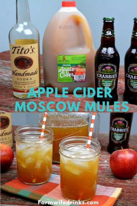 Apple Cider Moscow Mules Pitchers combine apple cider, ginger beer, and vodka to form the best cocktail to drink all fall long. Apple Cider Moscow Mules Pitchers combine apple cider, ginger beer, and vodka to form the best cocktail to drink all fall long. Beste Cocktails, Cider Cocktails, Apple Cider Cocktail, Cocktail Drinks, Cocktail Recipes, Cocktail Shaker, Alcoholic Drinks, Cocktail Movie, Recipes