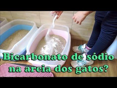 Testando Bicarbonato De Sodio Na Areia Dos Gatos Eu Nao Uso Ok