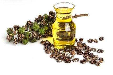 ulei de muștar pentru varicoză de ce atunci când varicoase venele genunchi doare