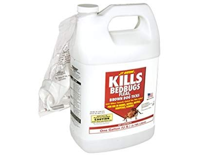 J T Eaton 204 O1g Kills Bedbugs Oil Based Bedbug Spray With