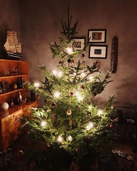 Erster Weihnachtsfeiertag Und Theresia Hat Mit Blick Auf Den